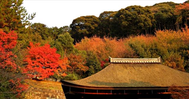 Ian-Poole-Kyoto